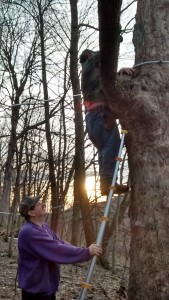 red tapping. mayno holding ladder